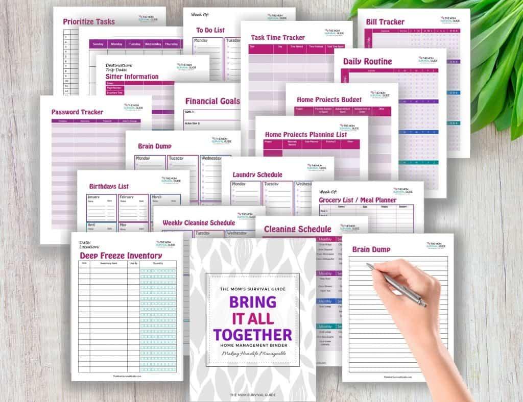 Bring It All Together Home Management Binder(4)