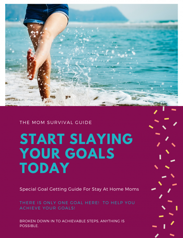 The Mom Survival Guide