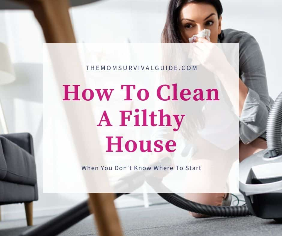 How To Clean a Filthy House