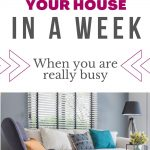 declutter your house in a week