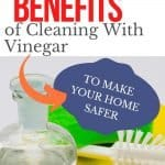 benefits of using vinegar to clean pin