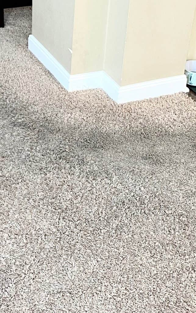 dirty house dirty carpets