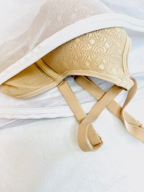 bra in mesh laundry bag